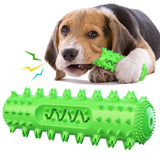 PetCustomGift Sounding Teeth Stick Dog Toothbrush Green