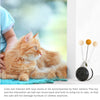 PetCustomGift Cat Balance Bike