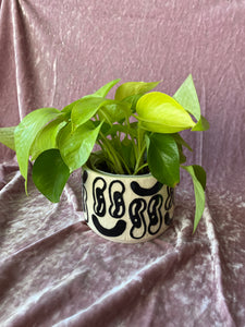 "SECONDS SALE - Carved Mixed Emotion Planter (4"")"