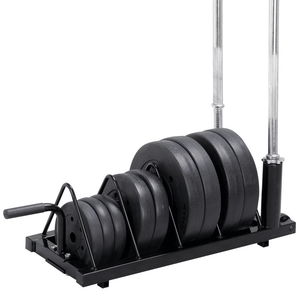 Horizontal Plate and Olympic Bar Rack