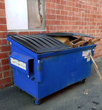 INDUSTRIAL ALLEY WAREHOUSE DUMPSTER BLUE SINGLE UNIT