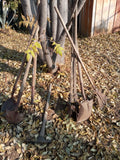 OLD GARDENING TOOLS SHOVELS RAKES MIX AND MATCH SINGLE UNIT