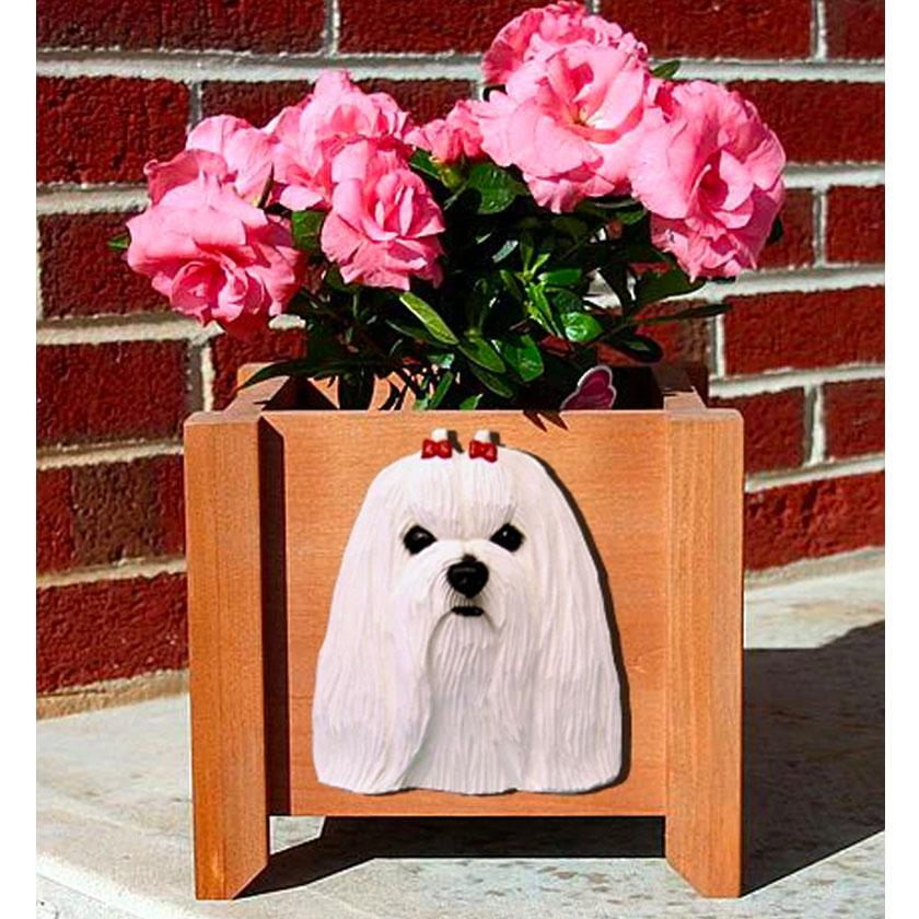 Dog Flower Outdoor Yard Pine Box
