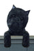 Affenpinscher Dog Door Topper