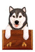 Alaskan Malamute Dog Leash Holder Black And White
