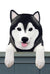 Alaskan Malamute Dog Door Topper Black and White