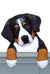 Bernese Mountain Dog Door Topper