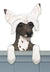 Chinese Crested Dog Door Topper