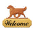 Golden Retriever Show Dog in Gait Yard Welcome Sign Cream