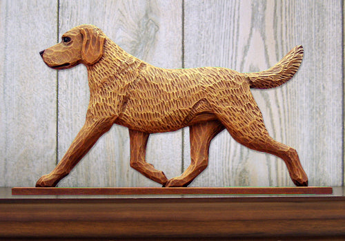 Chesapeake Bay Retriever Dog in Gait Topper