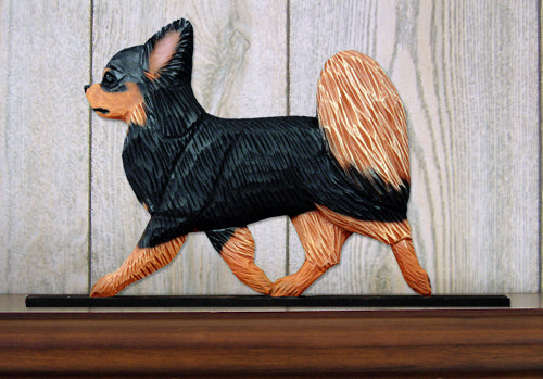 Chihuahua Long Hair Dog in Gait Topper Black