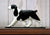 English Springer Spaniel Dog in Gait Topper Black
