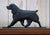 Field Spaniel Dog in Gait Topper Black