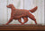 Irish Setter Dog in Gait Topper
