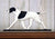 English Pointer Dog in Gait Topper Black and White