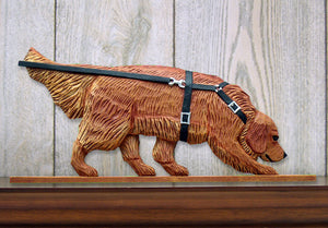 Golden Retriever Tracking Dog in Gait Topper Dark