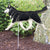 Siberian Husky Garden Landscaping Stake Black and White