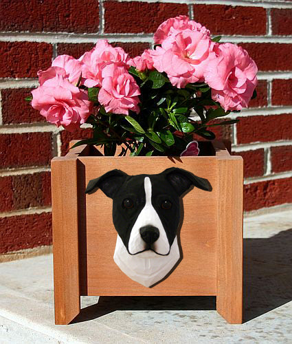 American Staffordshire Terrier Natural Dog Planter Box Black