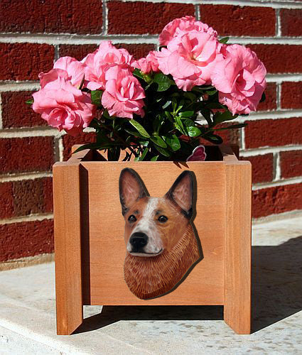 Australian Cattle Dog Planter Box Blue