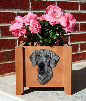 Great Dane Natural Dog Planter Box Blue