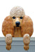 Poodle Dog Door Topper Apricot