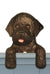 Portuguese Water Dog Door Topper Black