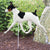 Rat Terrier Garden Landscaping Stake Black and White