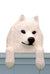 Samoyed Dog Door Topper
