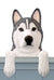Siberian Husky Dog Door Topper Black and White