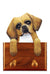 Tibetan Spaniel Dog Leash Holder Fawn