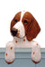 Welsh Springer Spaniel Dog Door Topper