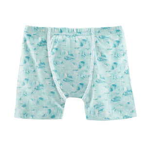 Water Boxer Brief