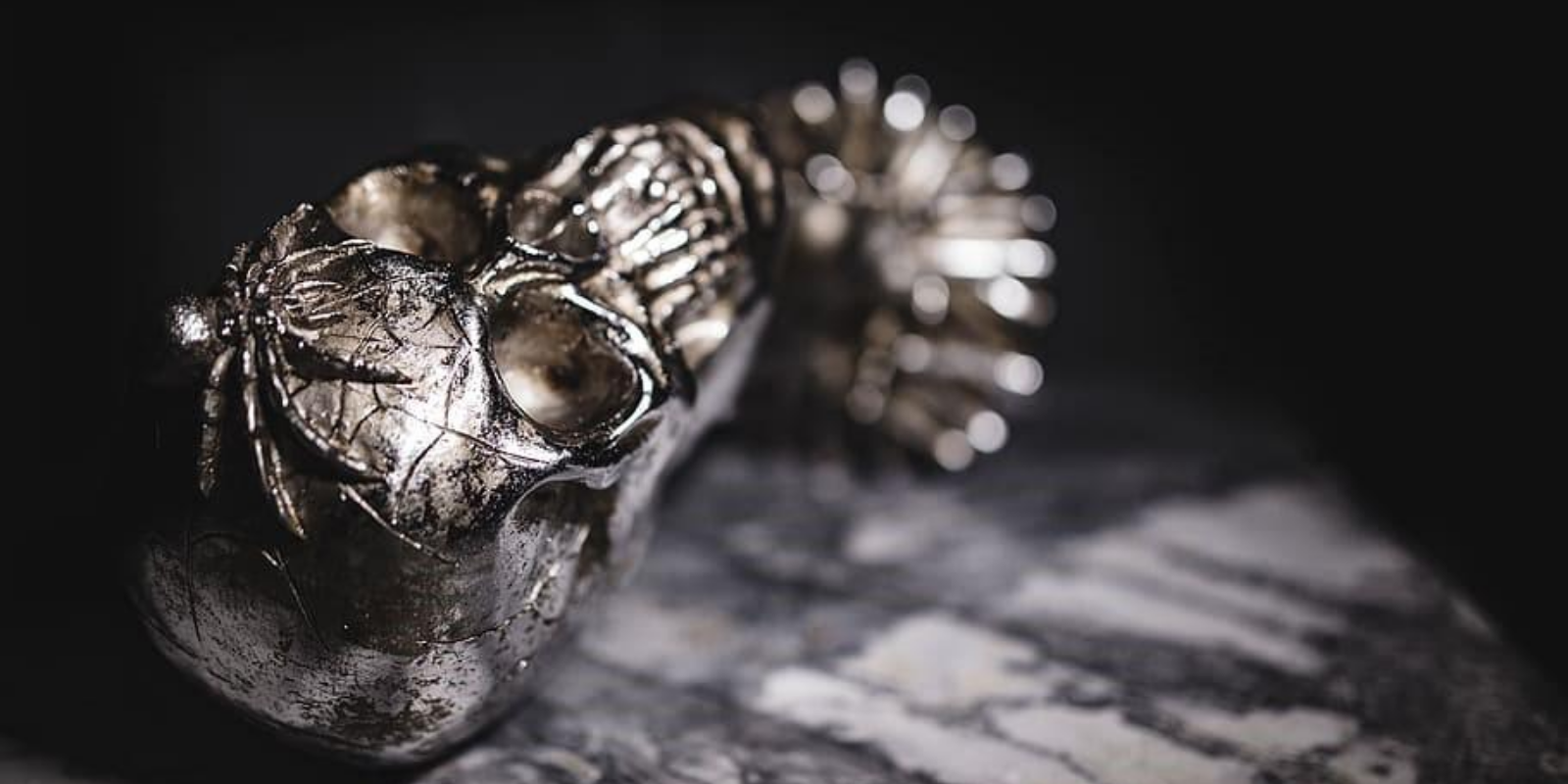 Silver or Steel skull ring