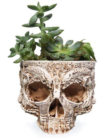 Skull Flower Pot Decor