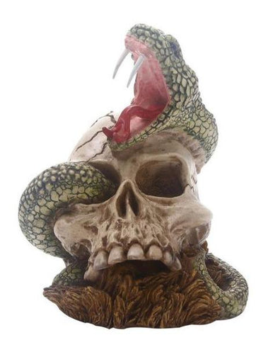 Snake Skull Decoration