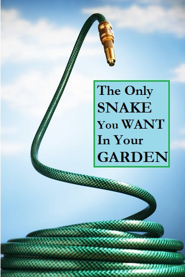 How To Keep Snakes Out Of Your Garden For Good