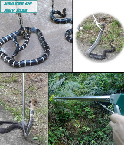 Snake Catching Pole