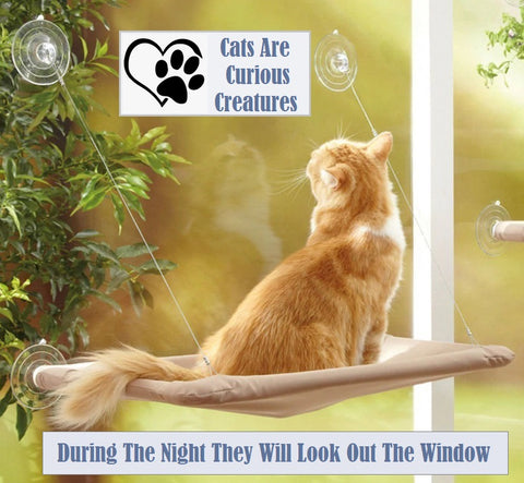 Suction Cup Cat Window Seat