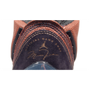 Air Jordan XX2 (Basketball)