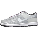 Nike Dunk Low (Reflector Pack)
