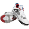 Air Jordan IV (4) Retro SE (What The)