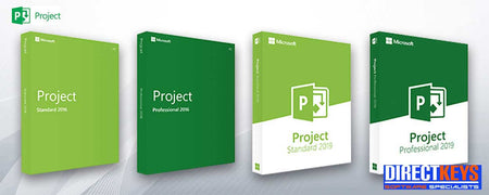 Professional software for projects