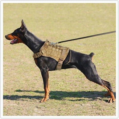 TACTICAL OUTDOOR DOG HARNESS