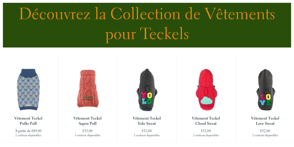 Vêtements Teckel