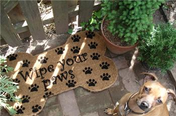 Wipe Your Paws Vinyl Coir Doormat