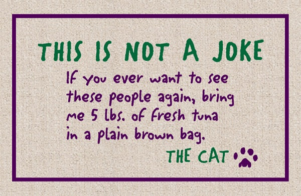 Not a Joke - The Cat Olefin Doormat