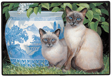 China Blue Polyster Doormat