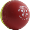 Gray Nicolls Swing Youth Cricket Ball