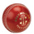 Gray Nicolls Test Crown Youth Cricket Ball 2016