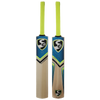 SG VS 319 Destroyer Cricket Bat